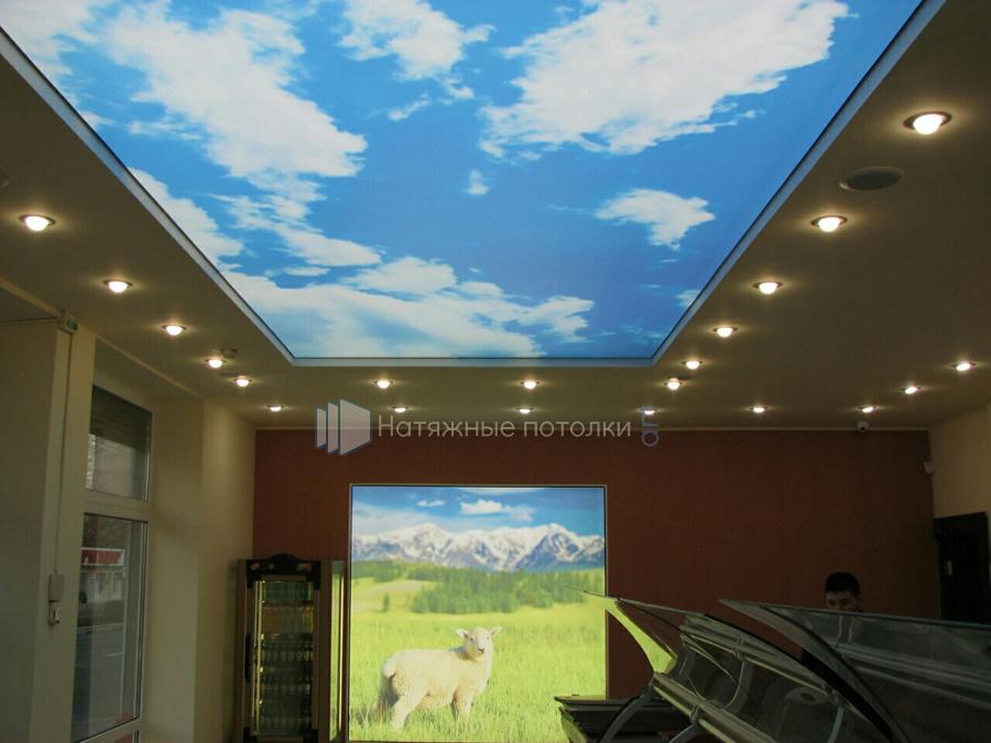 Потолок звездное небо - фото